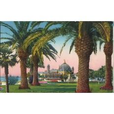 Cpa nice palmiers du jardin public couleurs vers 1910 for Vers du jardin