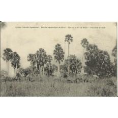 CPA: AFRIQUE CENTRALE NYASALAND, Vicariat Apostolique du Shiré-Père de la Cie de Marie, 1900