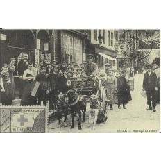 CPA: (REPRO). LILLE, Attelage de Chiens, vers 1910.