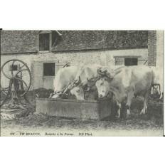CPA: (REPRO). En BEAUCE, Rentrée à la Ferme, vers 1900