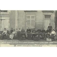 CPA: (REPRO). LONGEVILLE, Le Greffage de la vigne, vers 1900