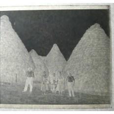 PHOTOGRAPHIE / VERRE, LE FAUCHAGE DU FOIN lieu inconnu, années 1920