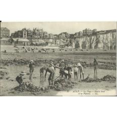 CPA: AULT, La Plage à Marée Basse, années 1910