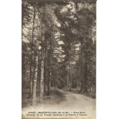 CPA: BADONVILLER, Chemin de la Vierge Clarisse (Pierre à Cheval), 1910