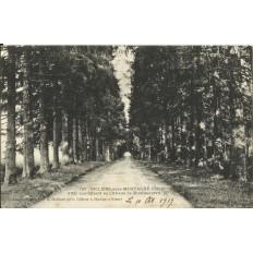 CPA: VILLIERS-sous-MORTAGNE, Allée du Chateau de Moulisseuvre, vers 1910