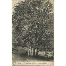 CPA: LA LOUVESC, Les 7 Fayards, vers 1910