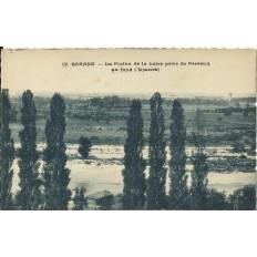 CPA: ROANNE, La Plaine de la Loire prise de Perreux, années 1950.